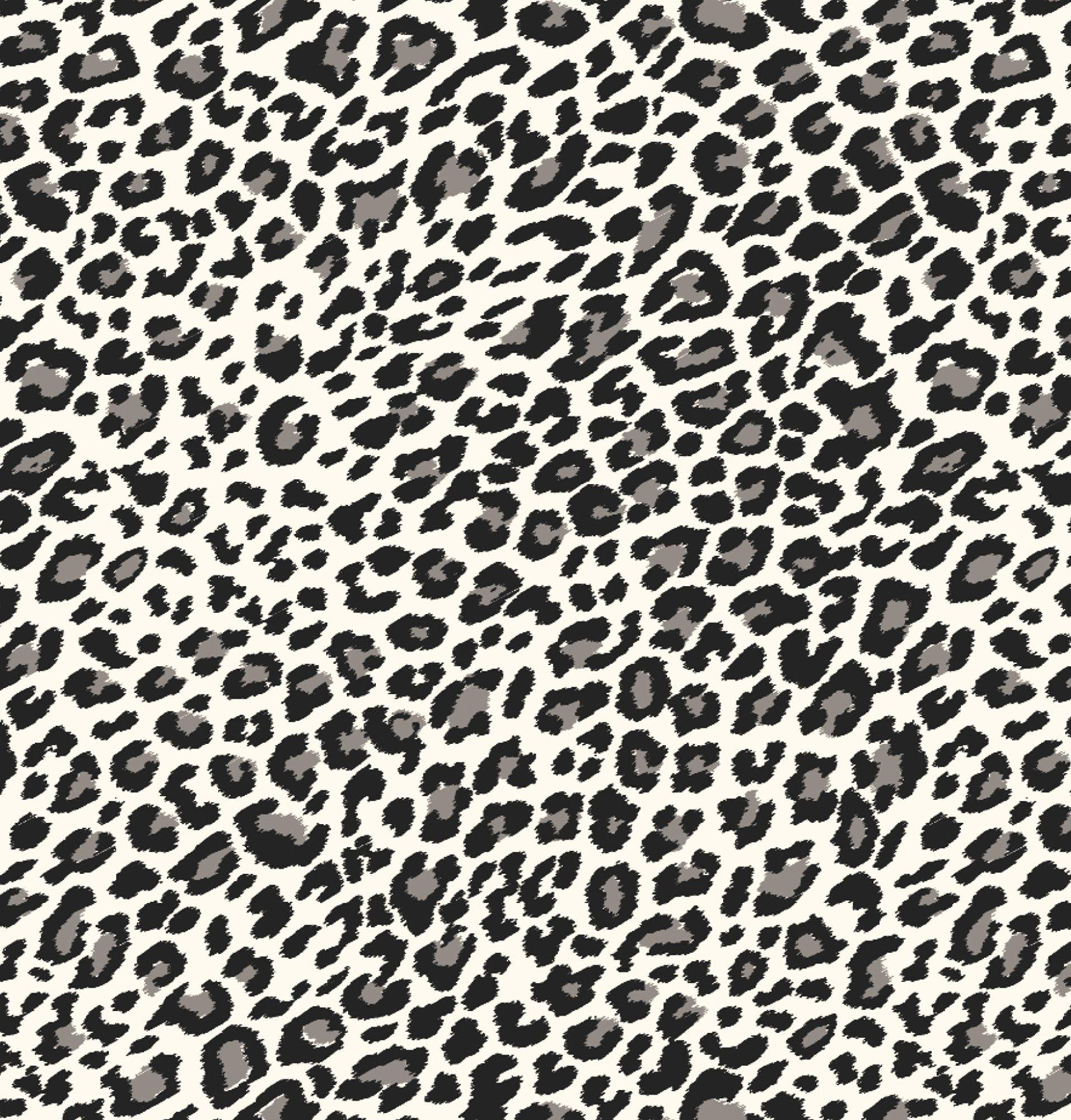 Black Cheetah Wallpapers - Wallpaper Cave