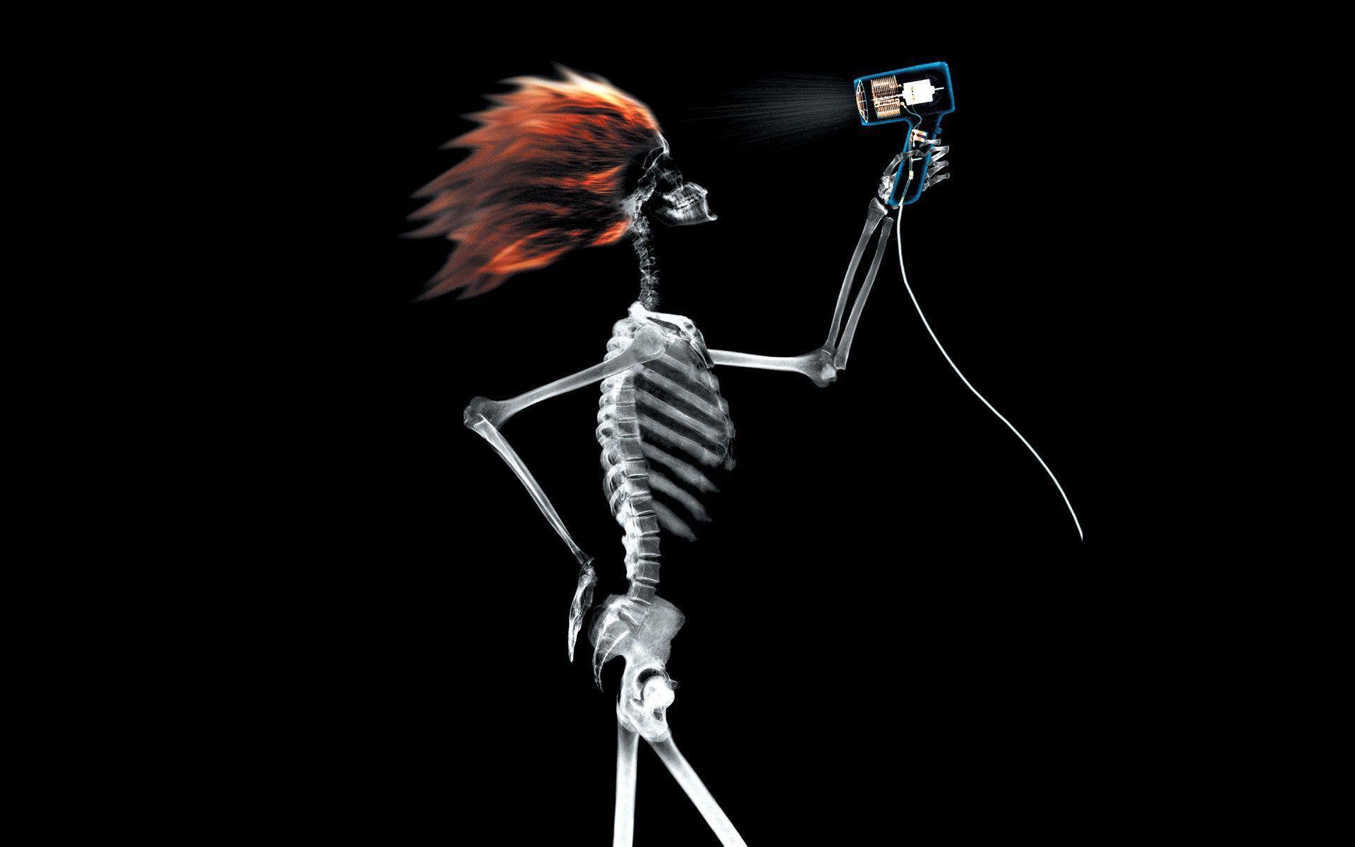 Xray Music Wallpapers: Skeleton Wallpapers For Desktop 2015