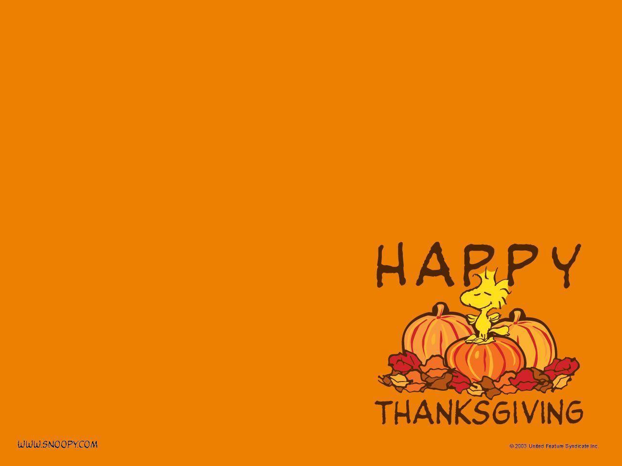 Thanksgiving - Peanuts Wallpaper (452774) - Fanpop