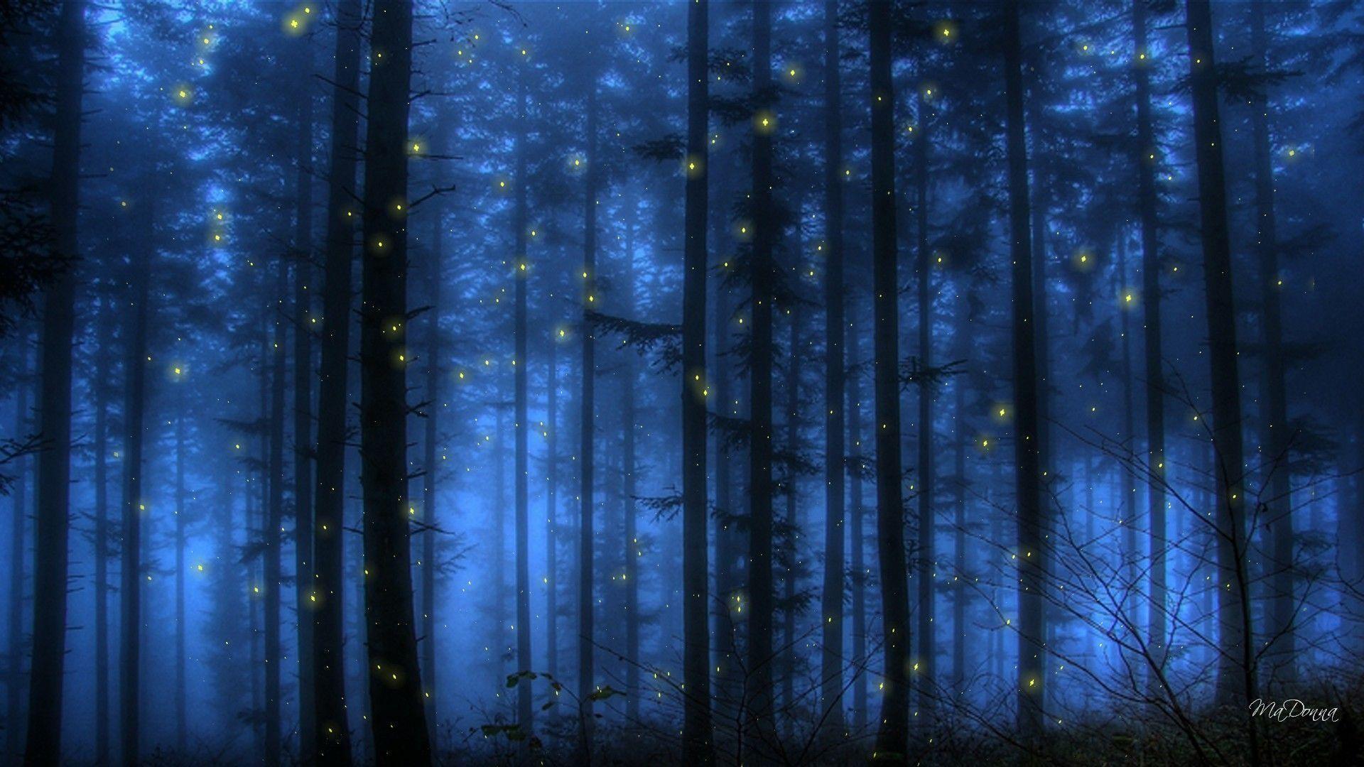 Pix For > Fireflies Wallpaper