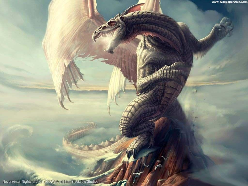 Flying Dragon Wallpapers Wallpaper Cave