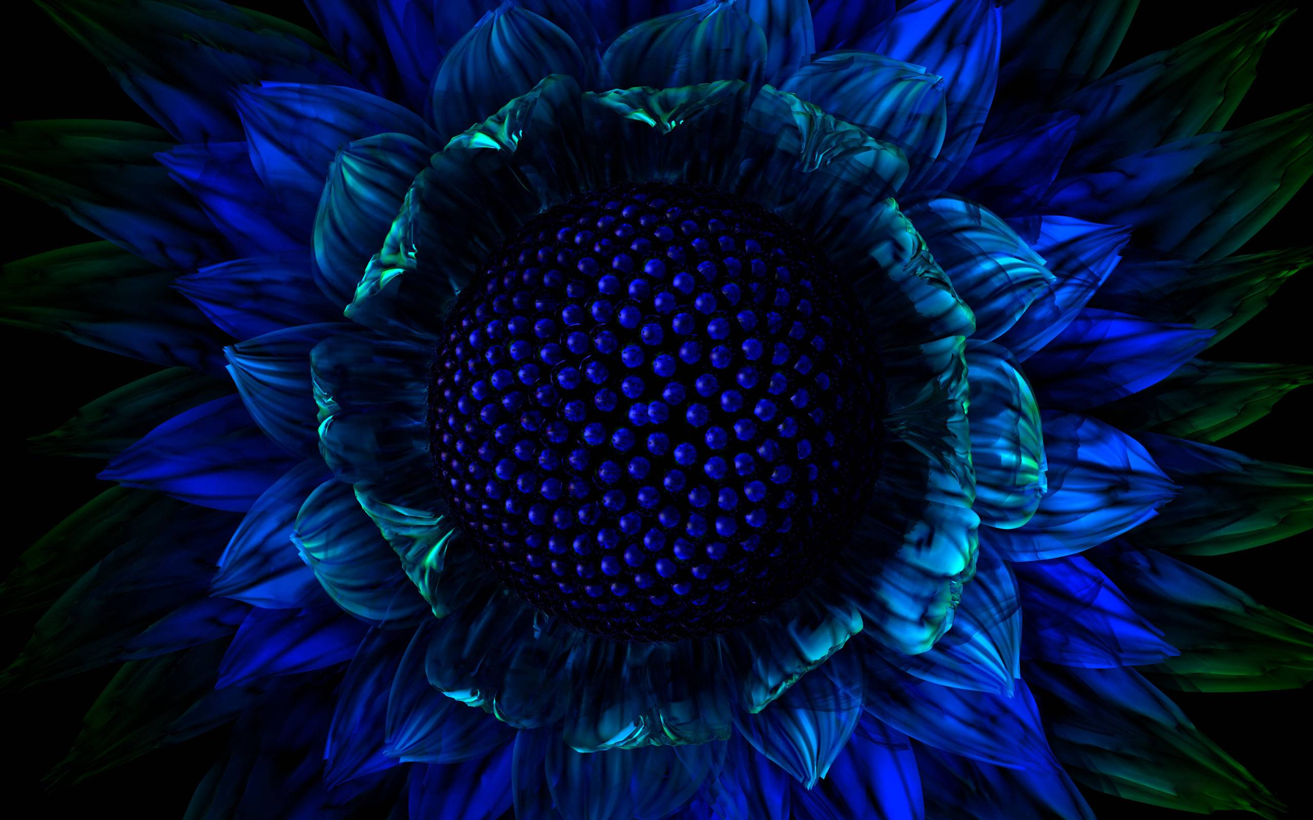 Exotic Flower Wallpapers - Wallpaper Cave