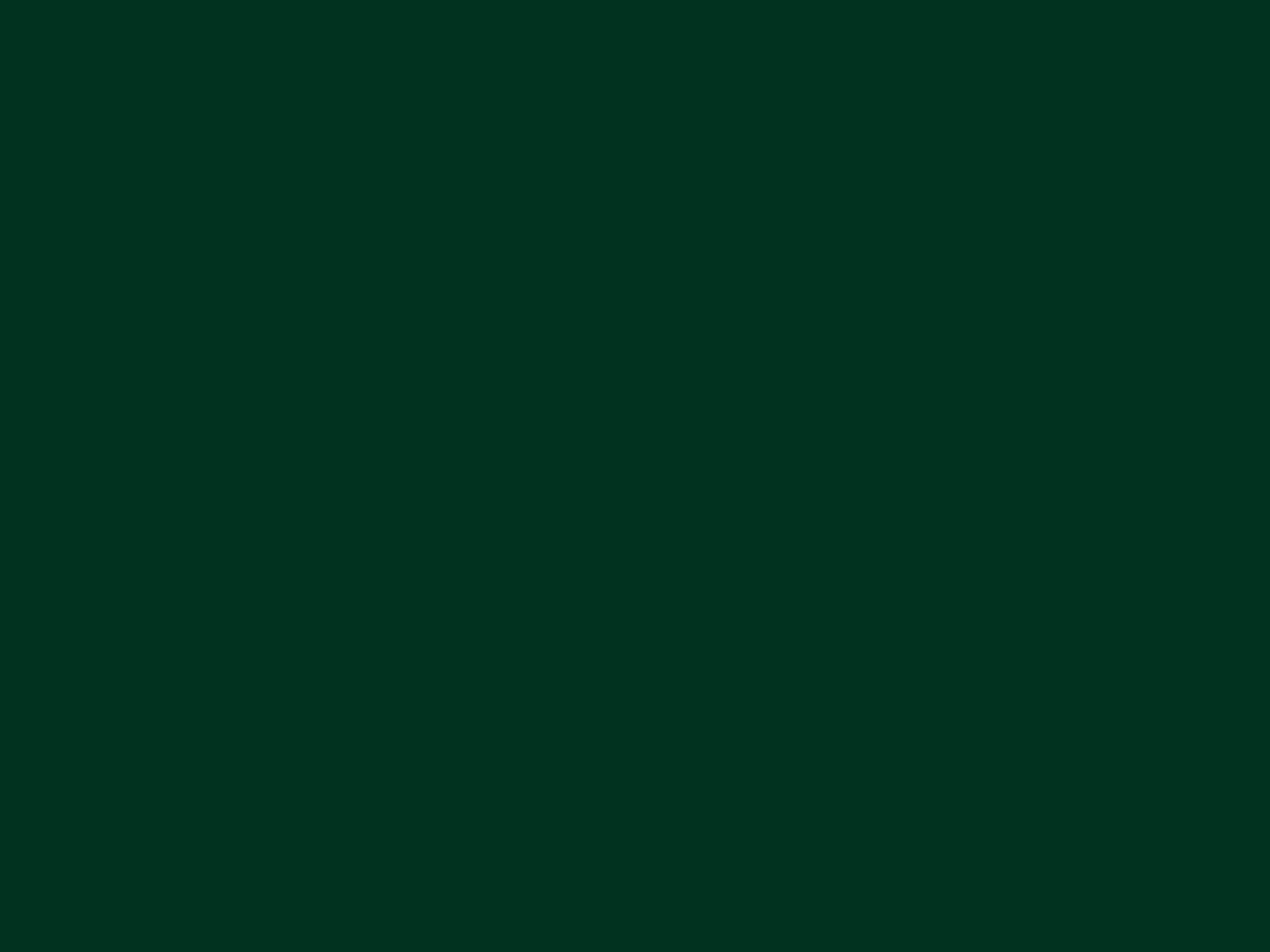 1600x1200 Dark Green Solid Color Background