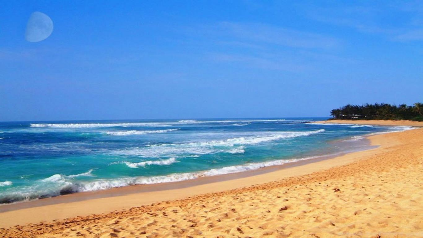 Hawaii Beaches Wallpapers Picture