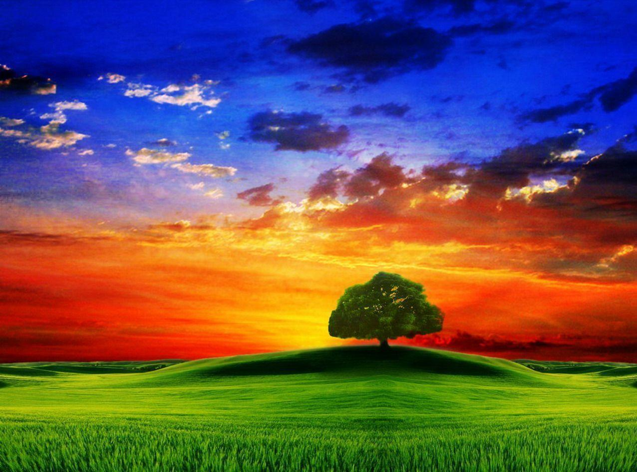 Wallpapers For > 3d Nature Wallpapers For Desktop Hd