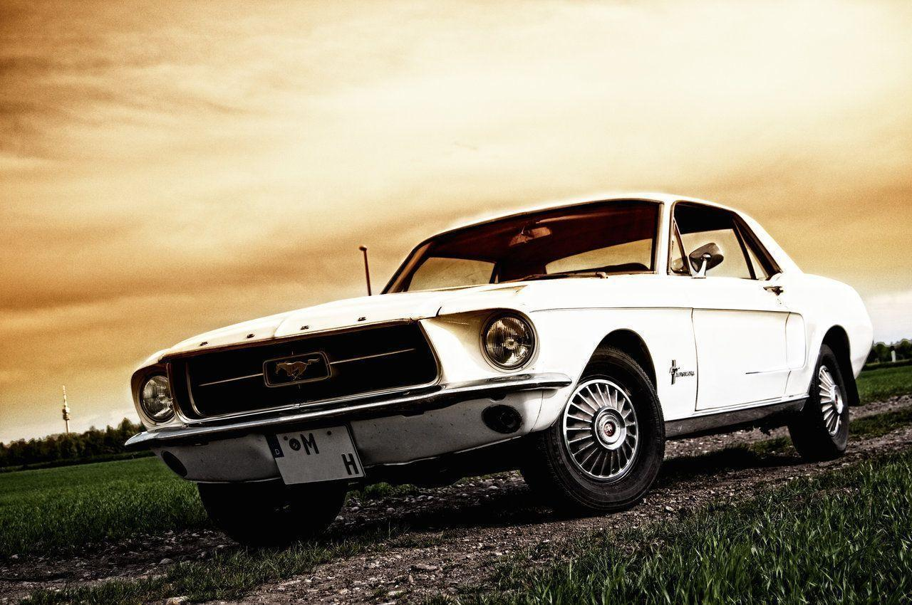 Ford Mustang Wallpapers HD Images Ford Mustang Collection