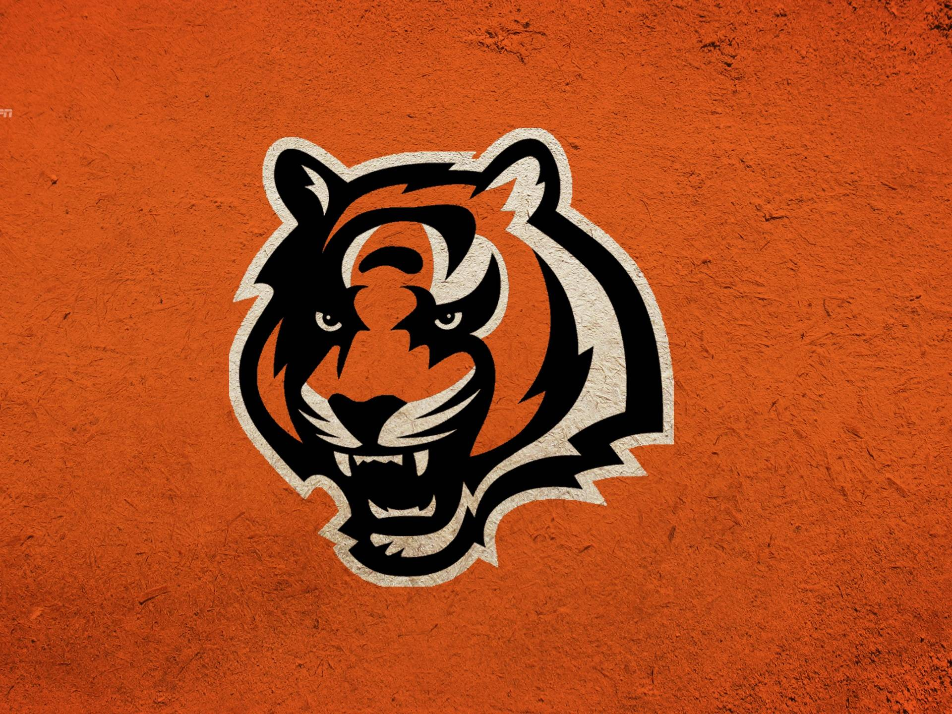 Cincinnati Bengals Wallpaper | HD Wallpapers, backgrounds high .