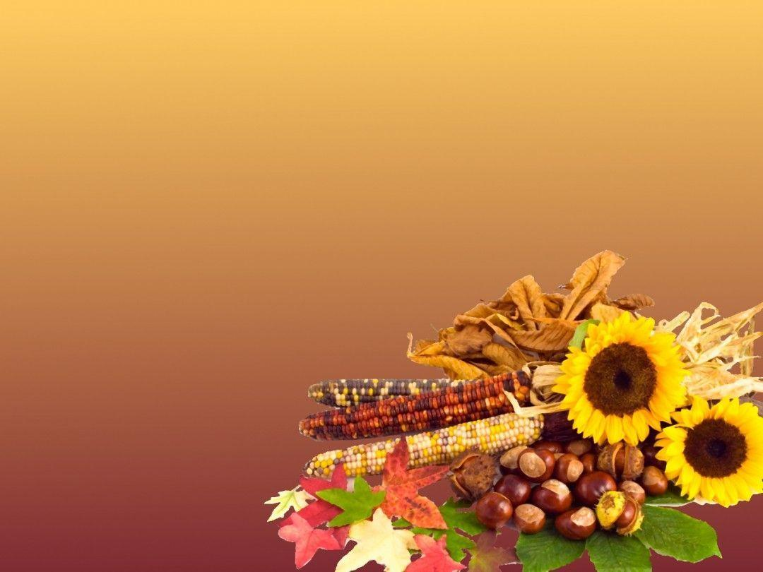 Free Thanksgiving Wallpaper Backgrounds