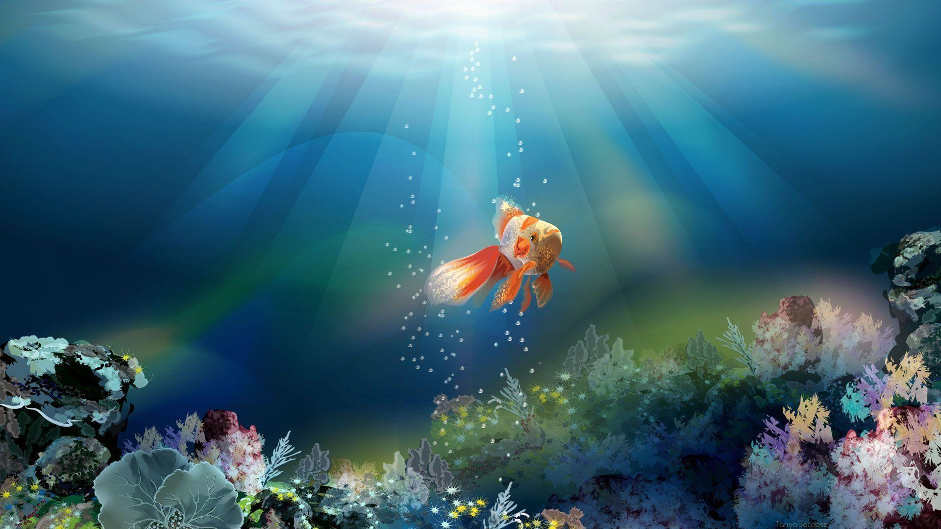 Wallpapers of fish wallpaper cave for Cool fishing wallpapers