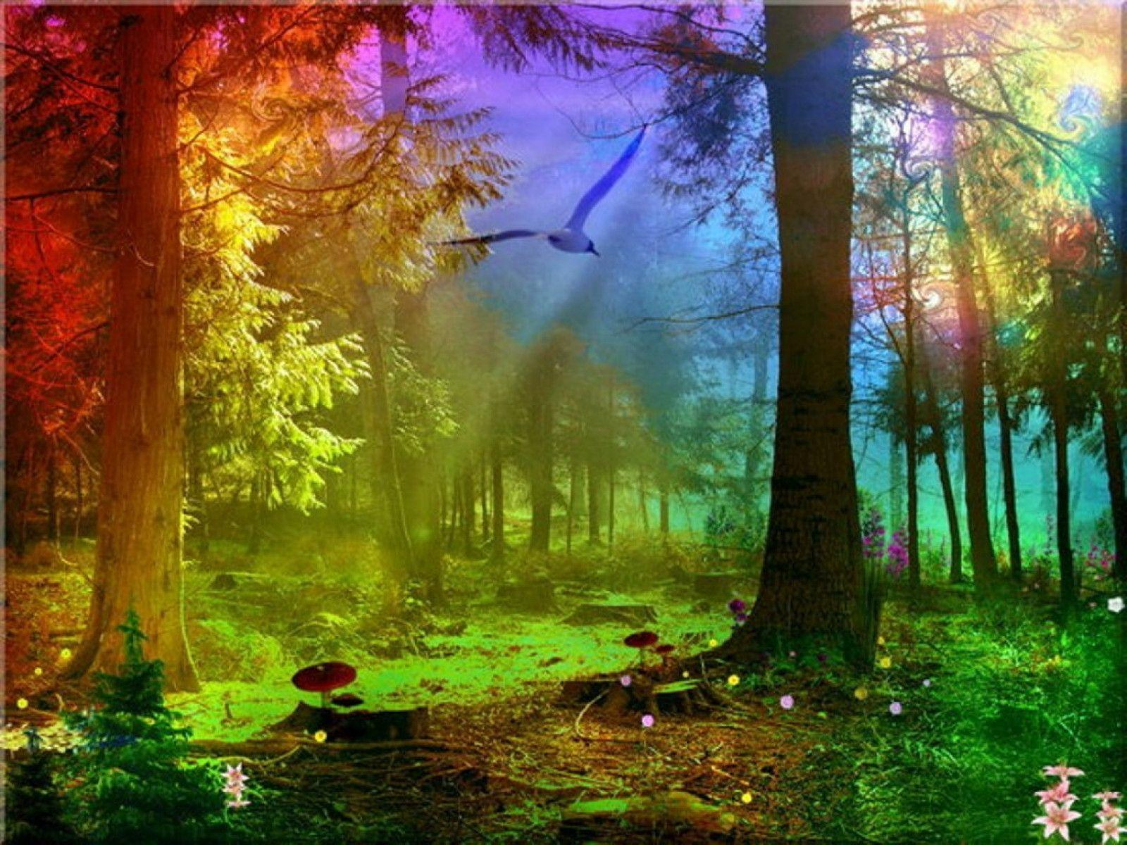 colorful nature wallpapers wallpaper cave