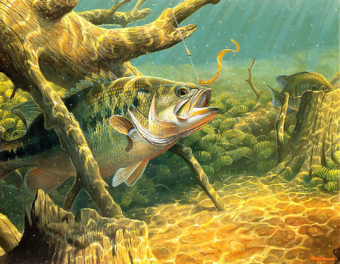 Largemouth bass wallpapers wallpaper cave for Fish out of water watercolor