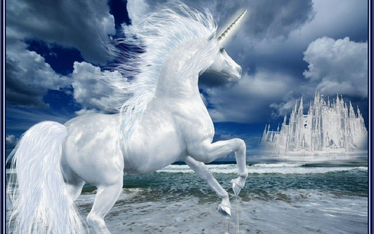 Unicorn backgrounds wallpaper cave unicorn wallpaper widescreen wallpaper unicorn wallpaper voltagebd Images