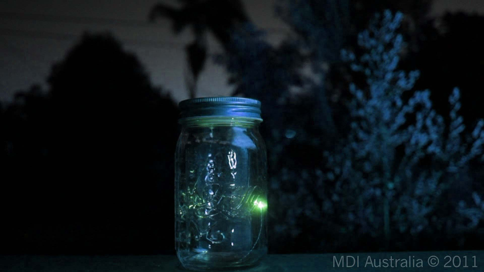 Images For Fireflies In A Jar Wallpaper