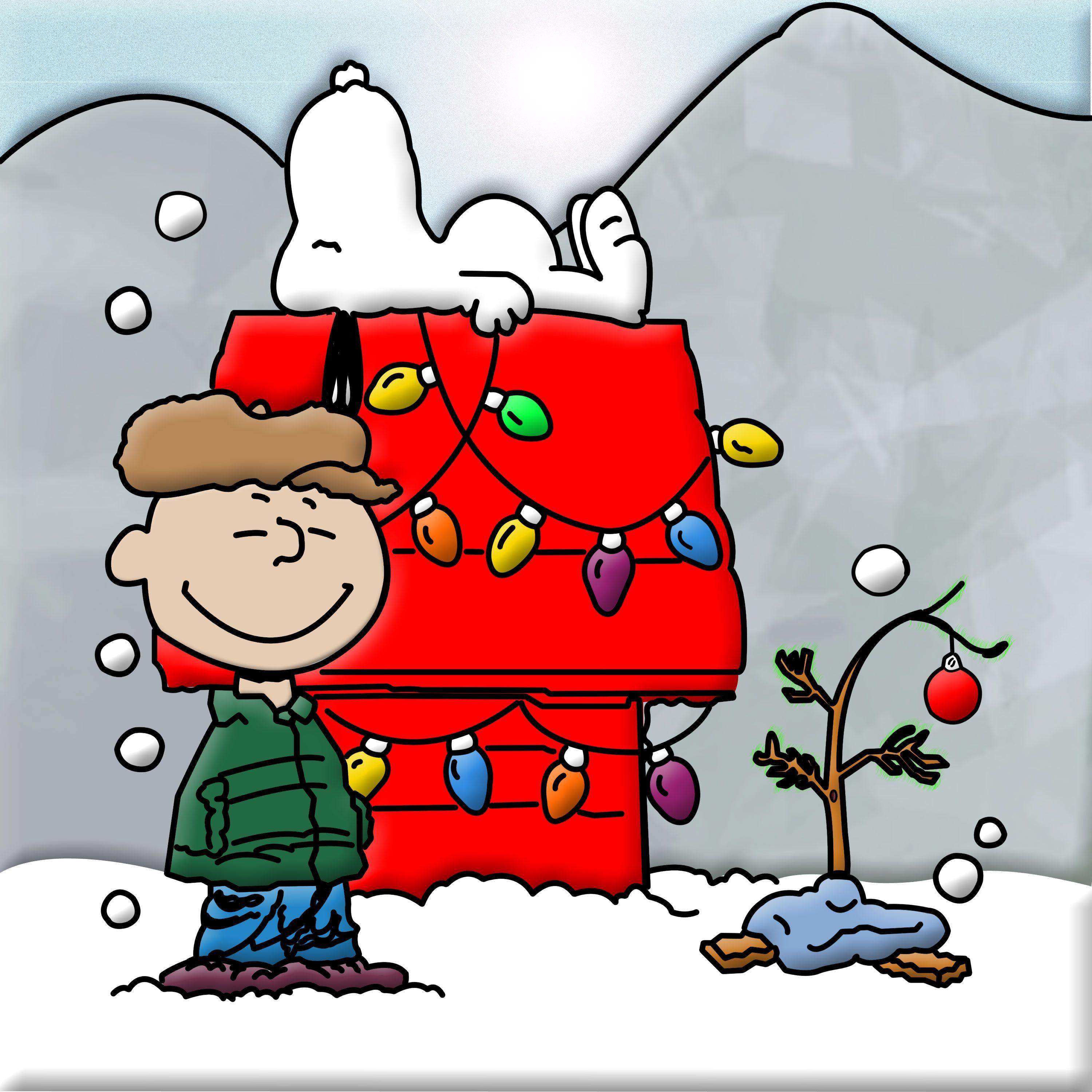 Charlie brown christmas tree wallpapers wallpaper cave - Charlie brown bilder ...