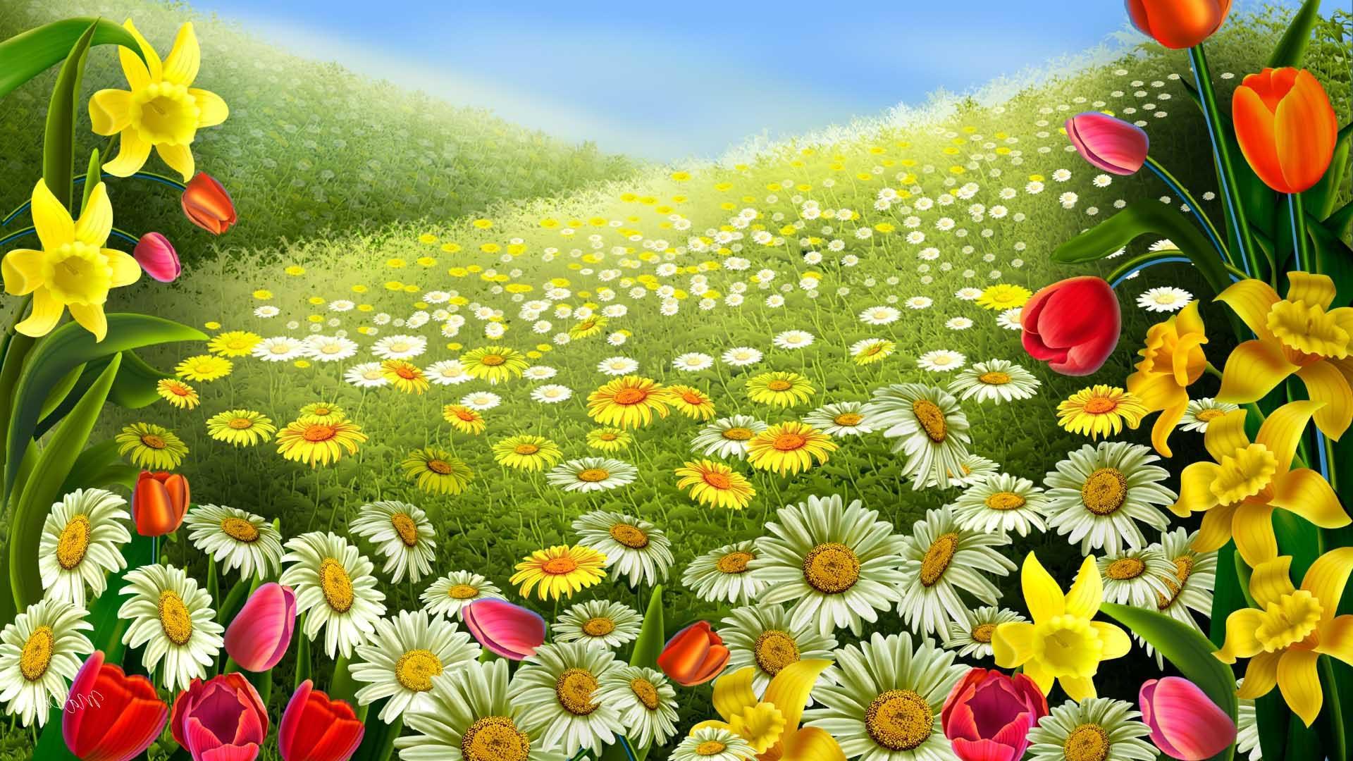 Colorful Flowers Spring Desktop Backgrounds
