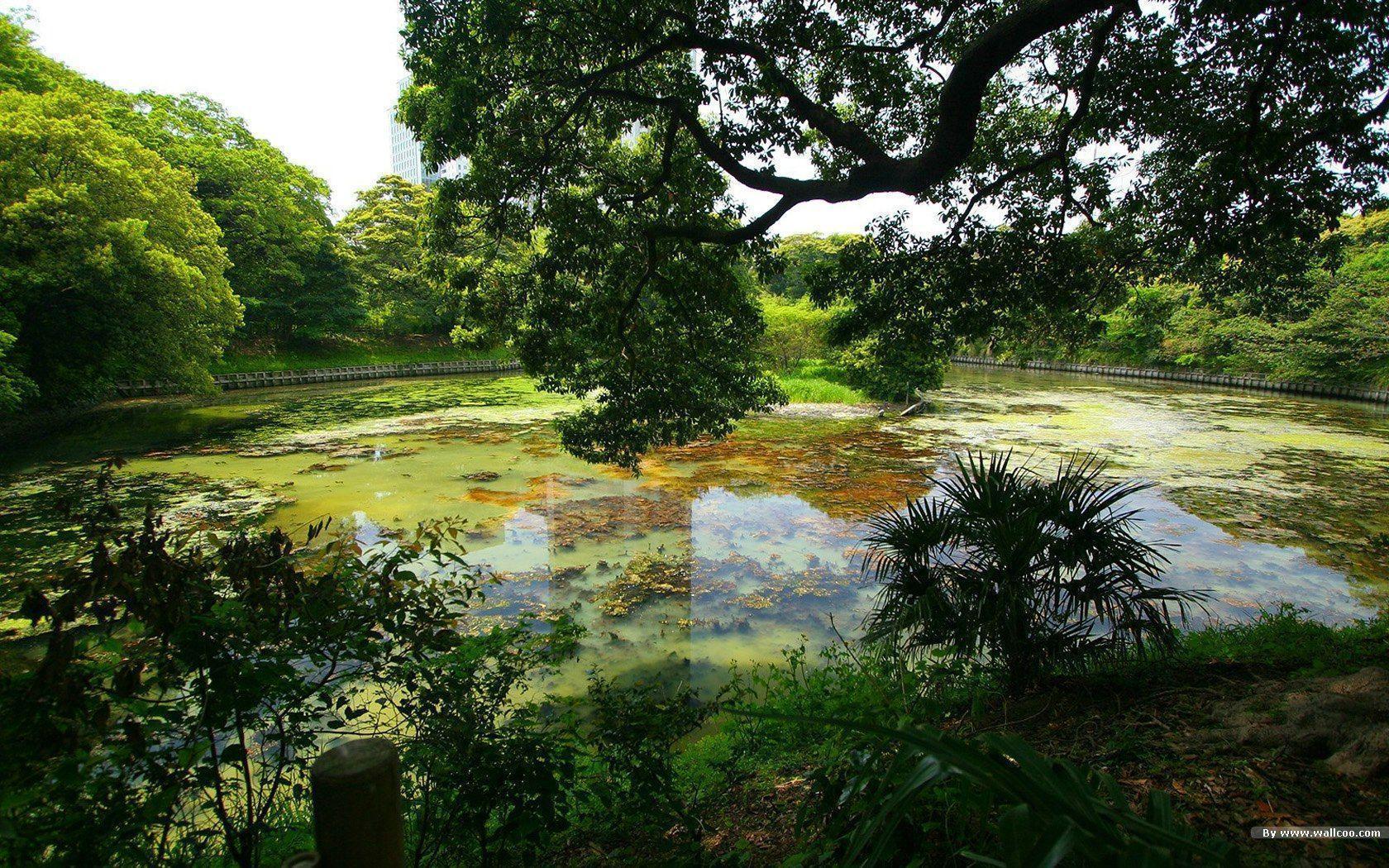 Japanese Gardens Wallp...