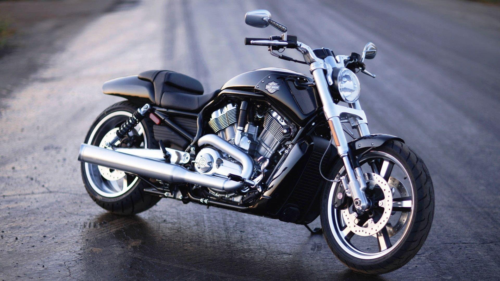 Harley Davidson V Rod Muscle Wallpapers - Wallpaper Cave