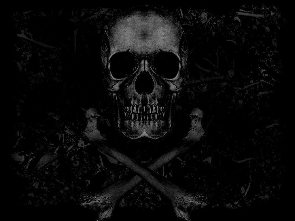 Free Skull Desktop Wallpapers Wallpaper Cave