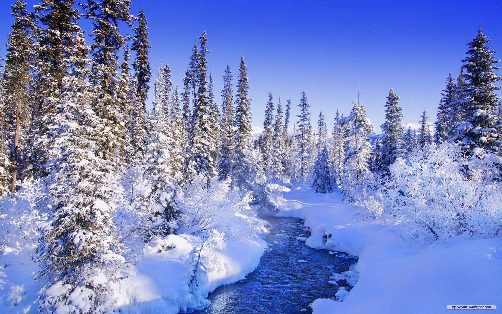 winter nature best wallpapers ever - photo #26