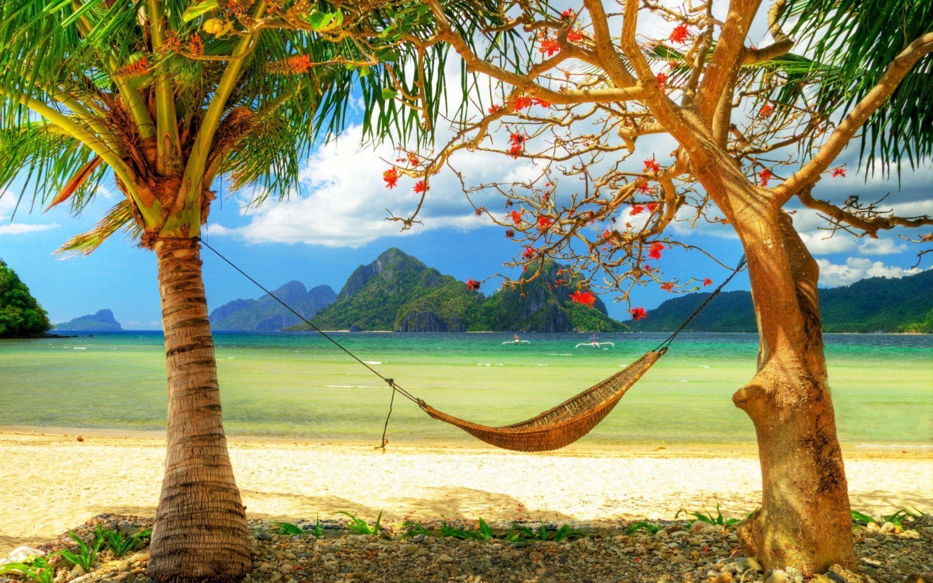 Best Relaxing Summer Wallpaper | HD Wallpapers, backgrounds high ...
