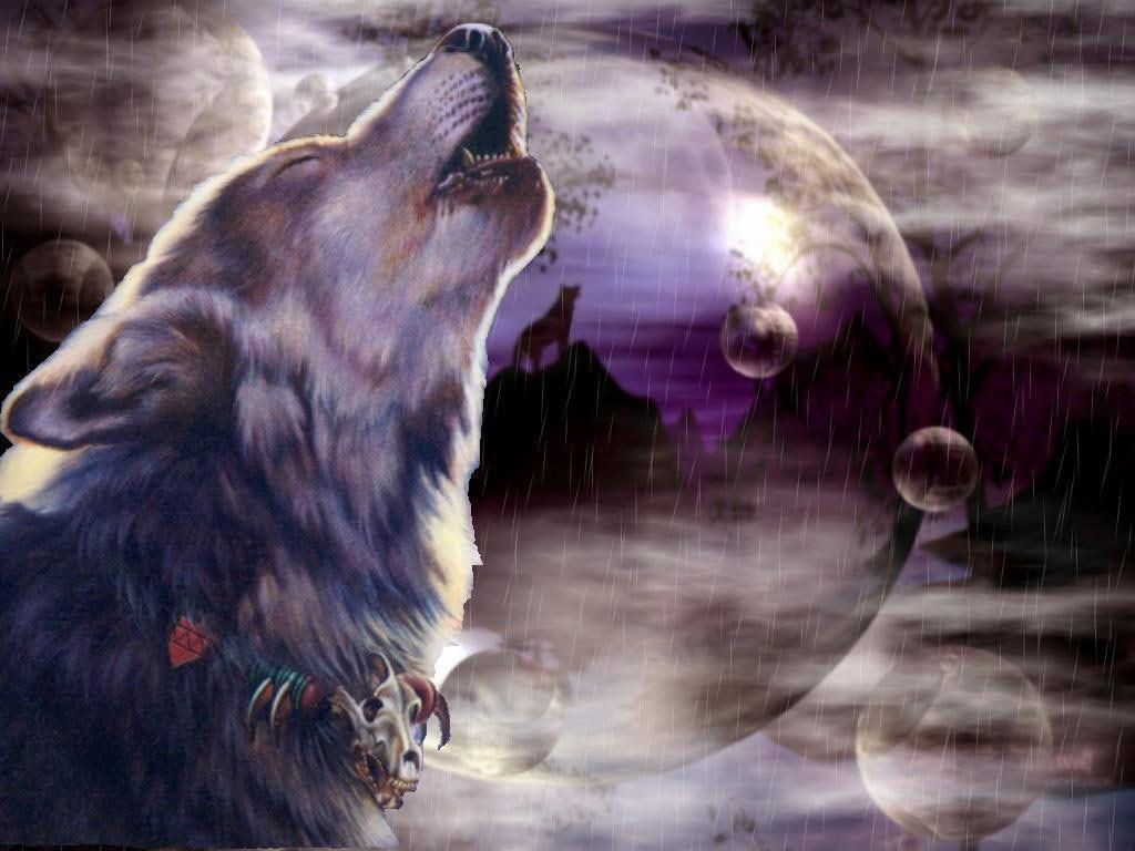 really cool wolf wallpapers - photo #37