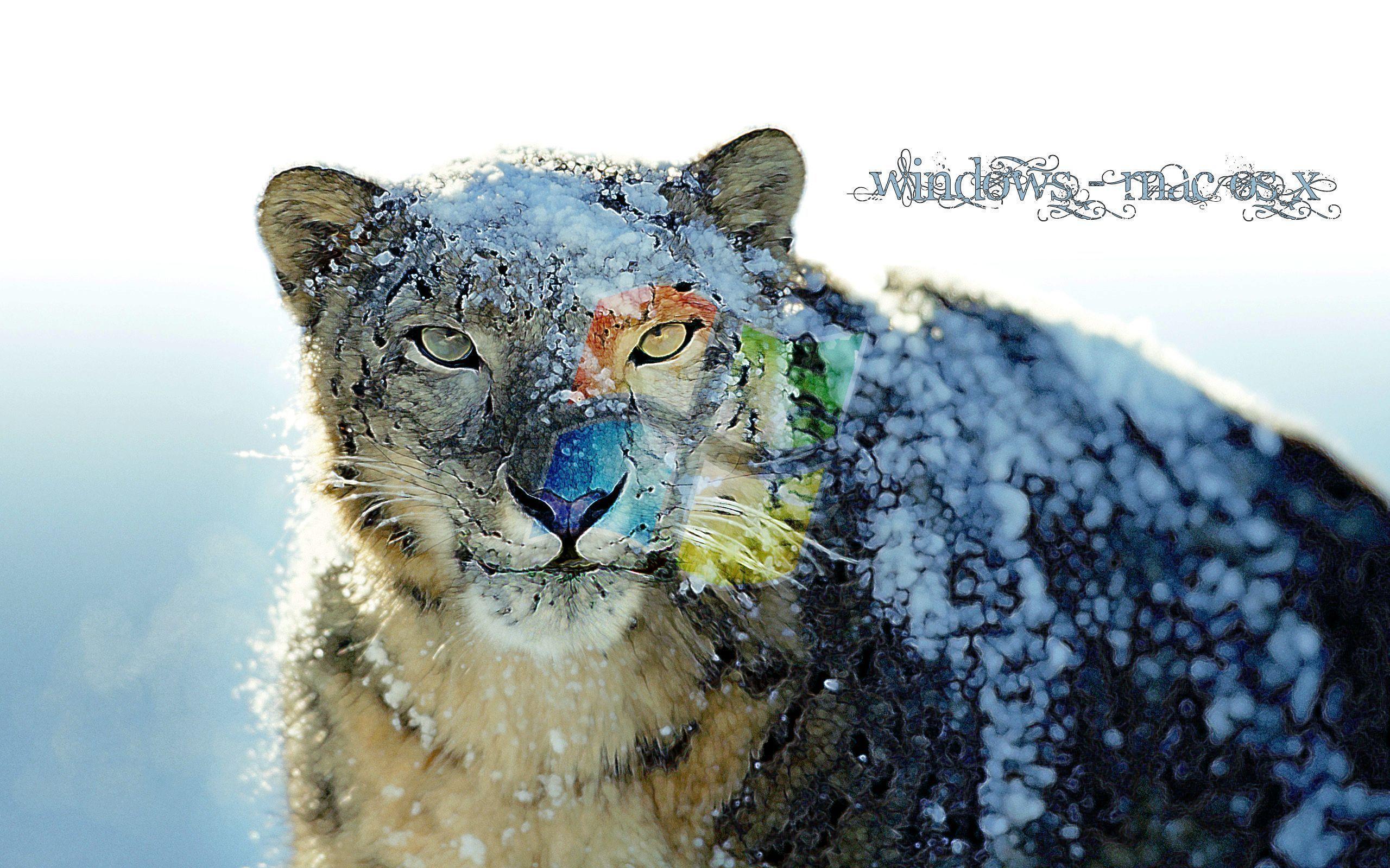 Mac Snow Leopard Wallpapers Wallpaper Cave