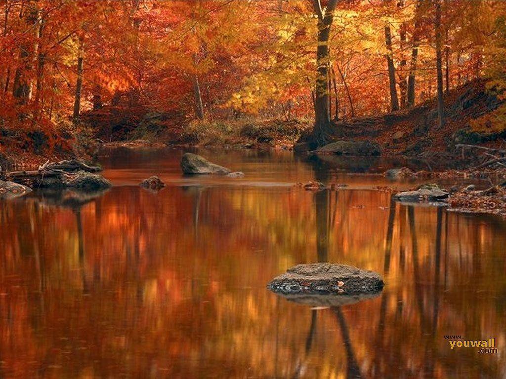 Free Autumn Desktop Screensavers: Autumn Backgrounds Wallpapers