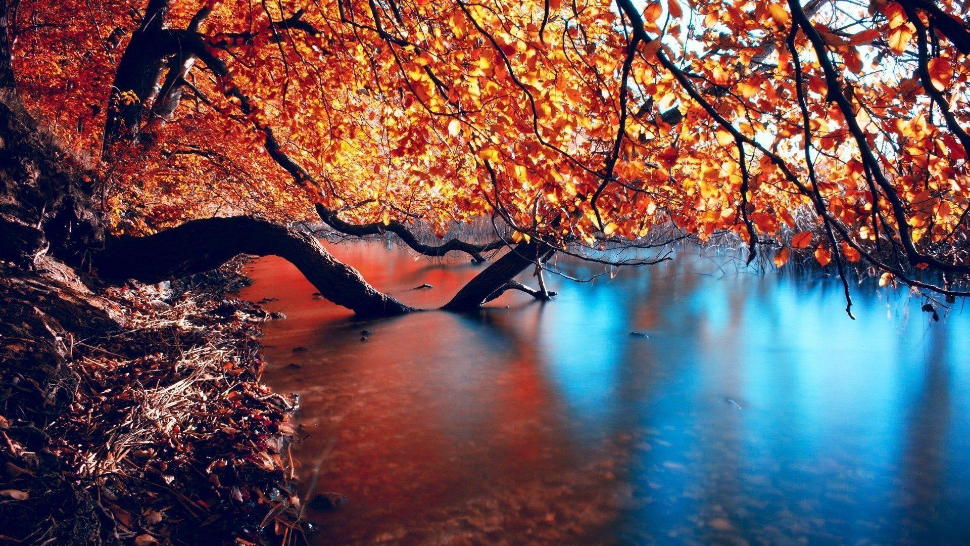 Hd Wallpapers Autumn Lake Full Desktop 1080p 1920x