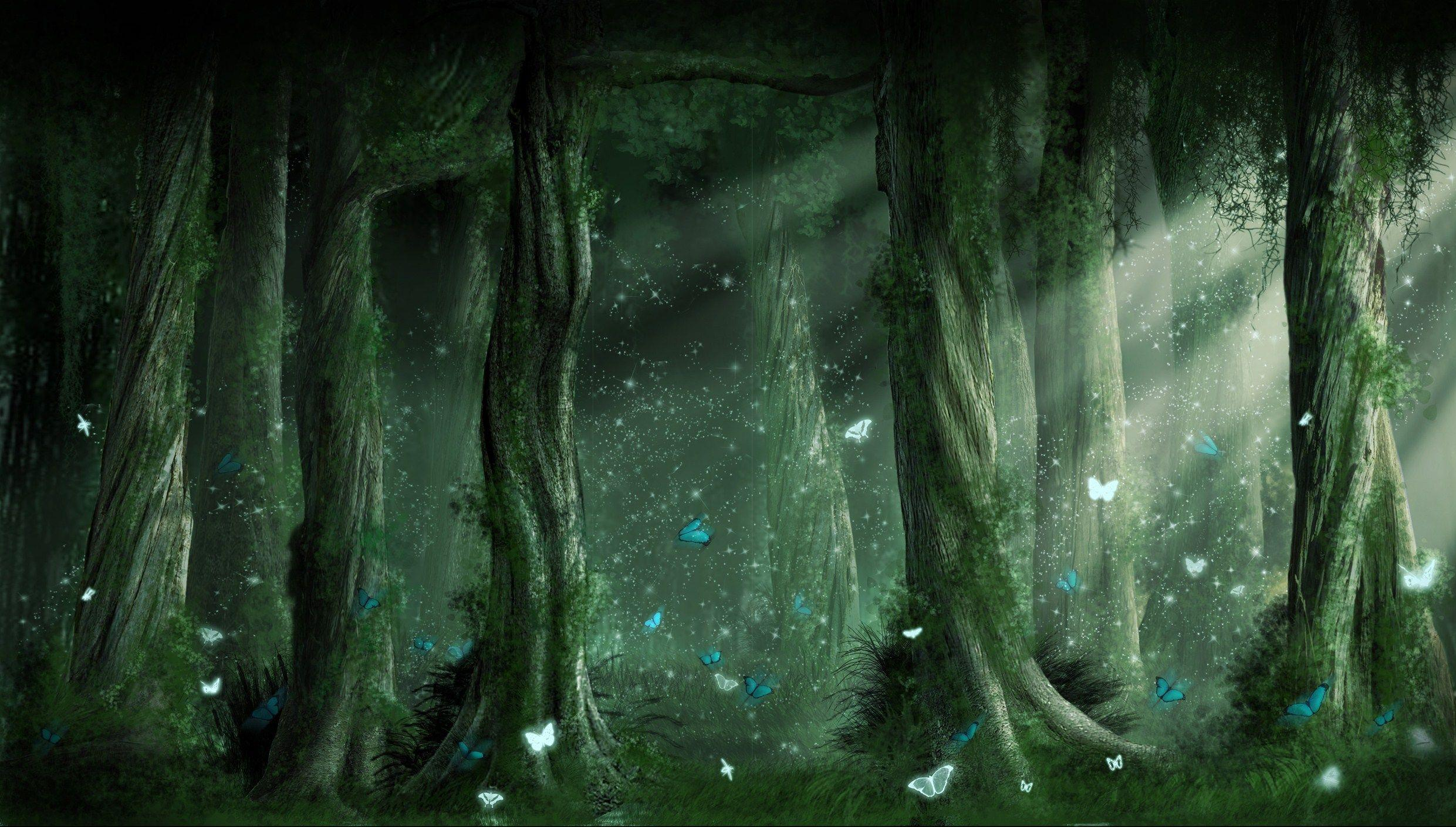 Dark Forest Backgrounds, wallpaper, Dark Forest Backgrounds hd ...