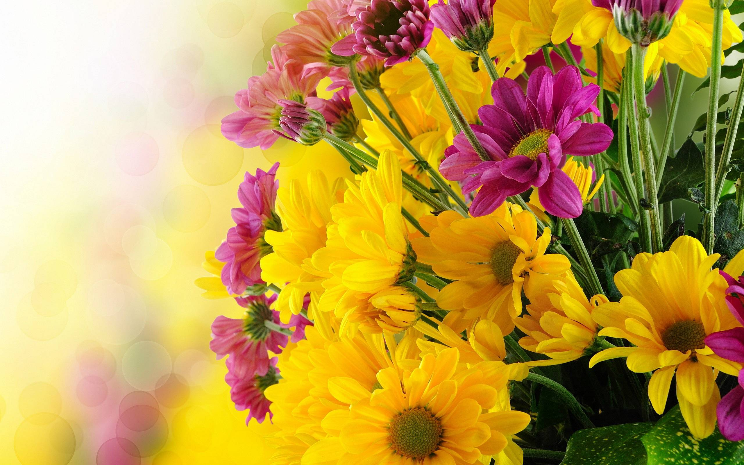 Yellow Flowers Wallpapers - Wallpaper Cave