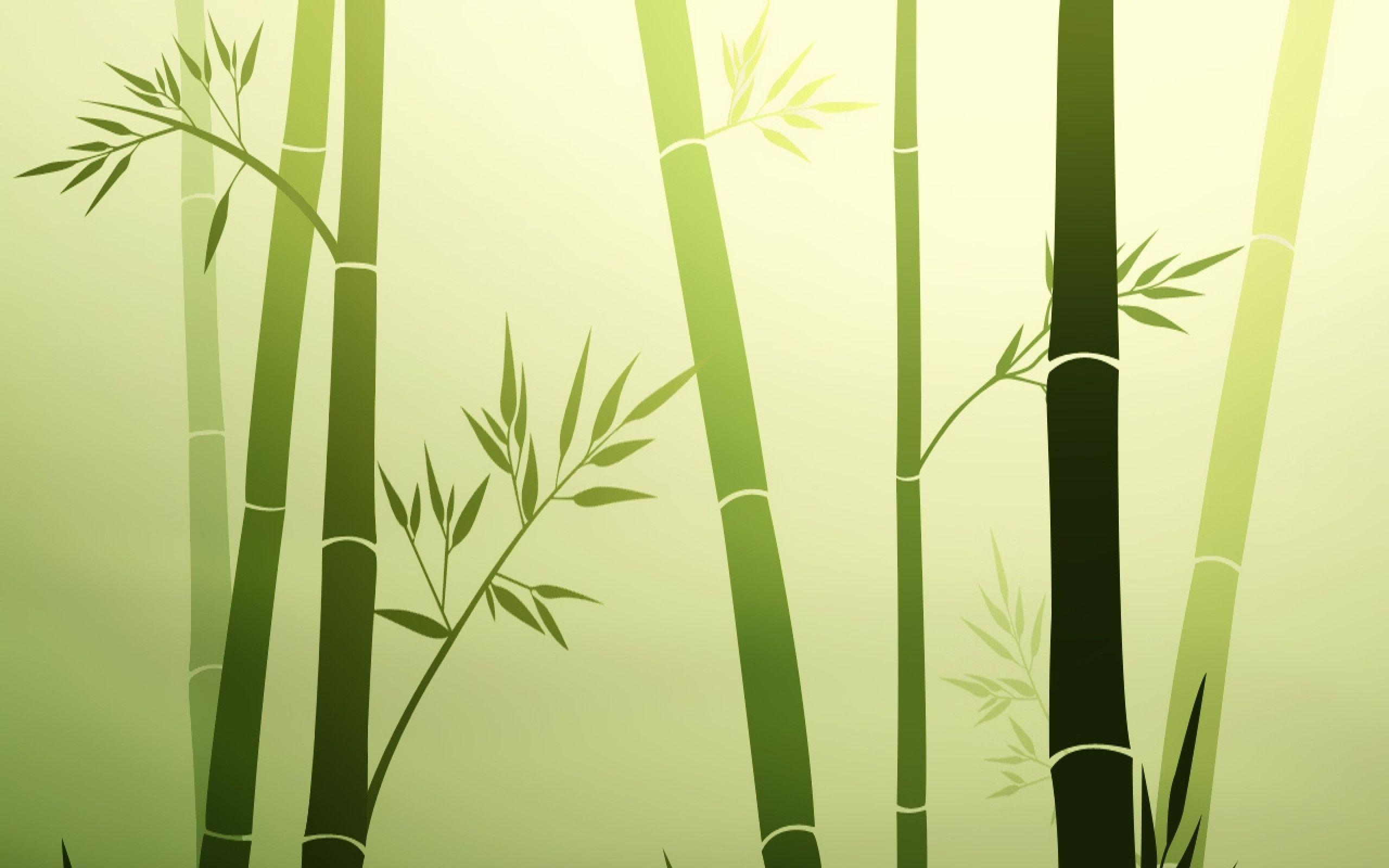 bamboo wallpaper by doantrangnguyen - photo #23