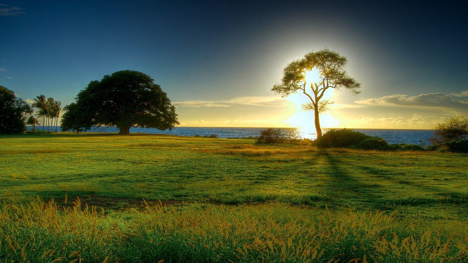 Nature Wallpapers High Definition - Wallpaper Cave