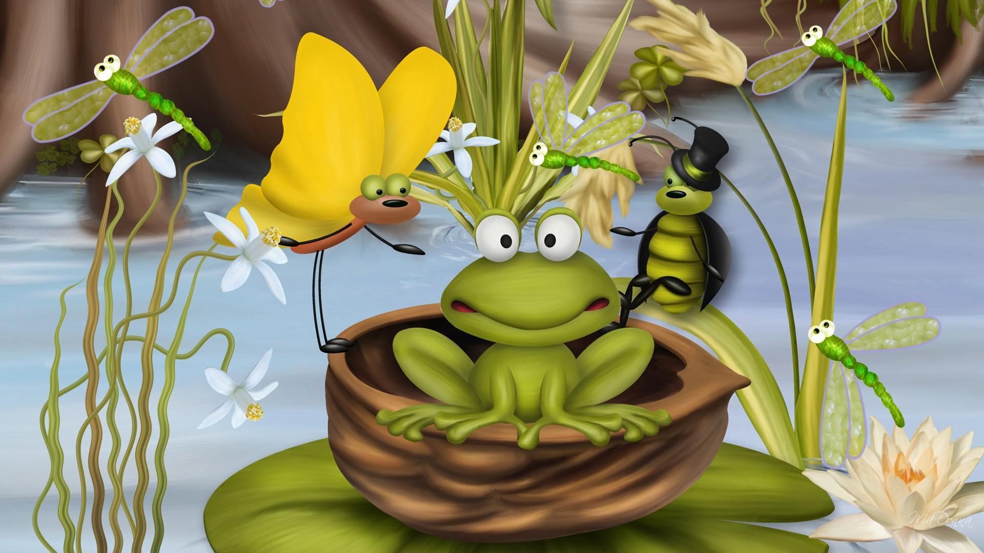 Froggy Wallpapers - Wallpaper Cave