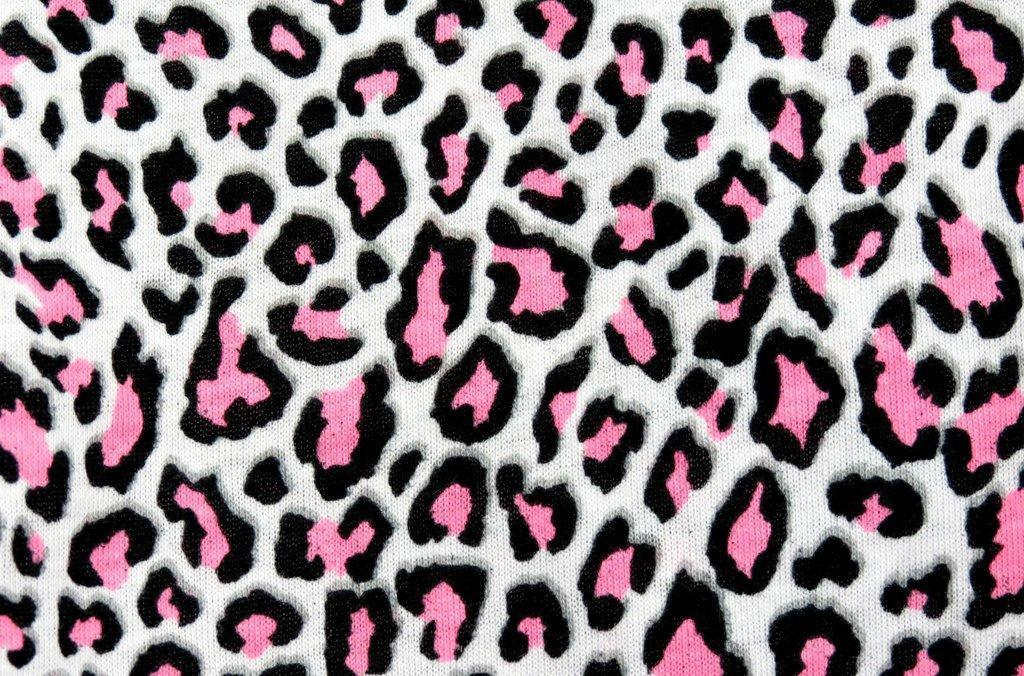 this animal print desktop - photo #19