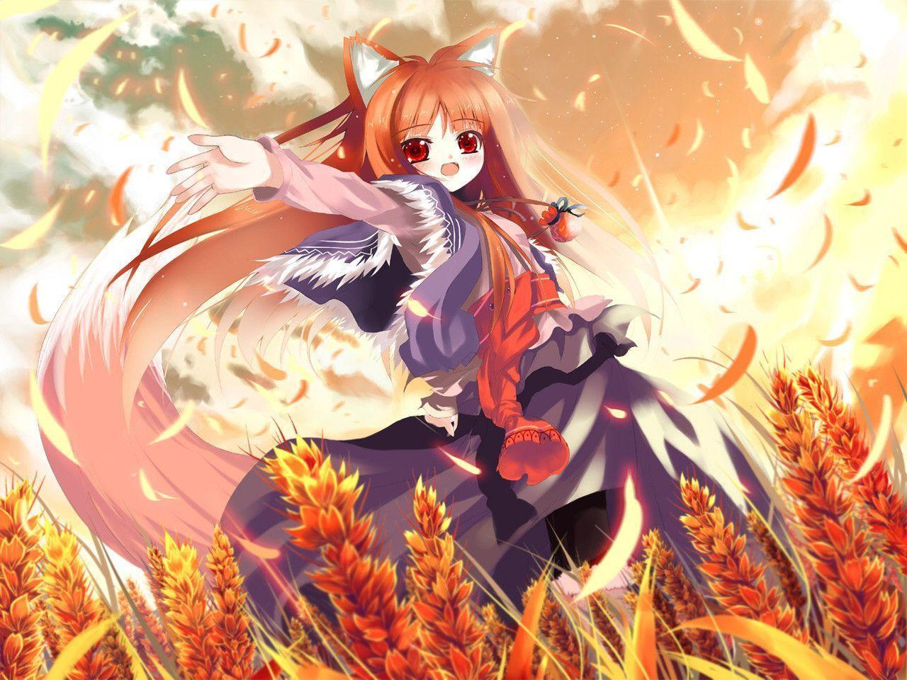 Anime wolf wallpapers wallpaper cave - Wolf girl anime pictures ...