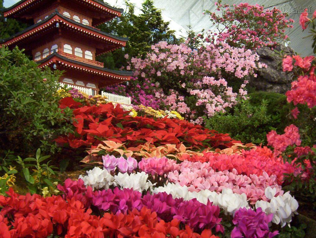 Spring Japanese Garden Wallpaper Design Awesome 514831 Inspiration