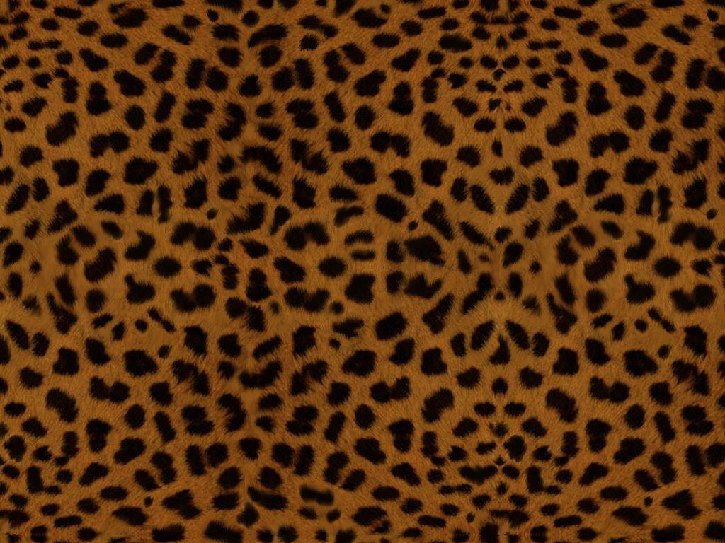 Leopard Backgrounds - Wallpaper Cave
