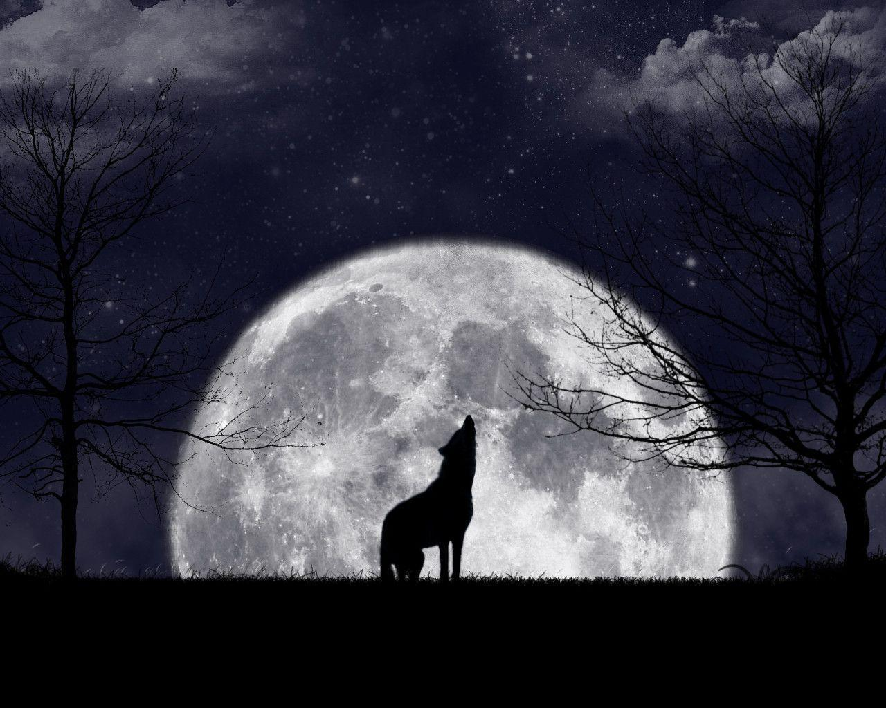 Wolf Howling Moon by Namari