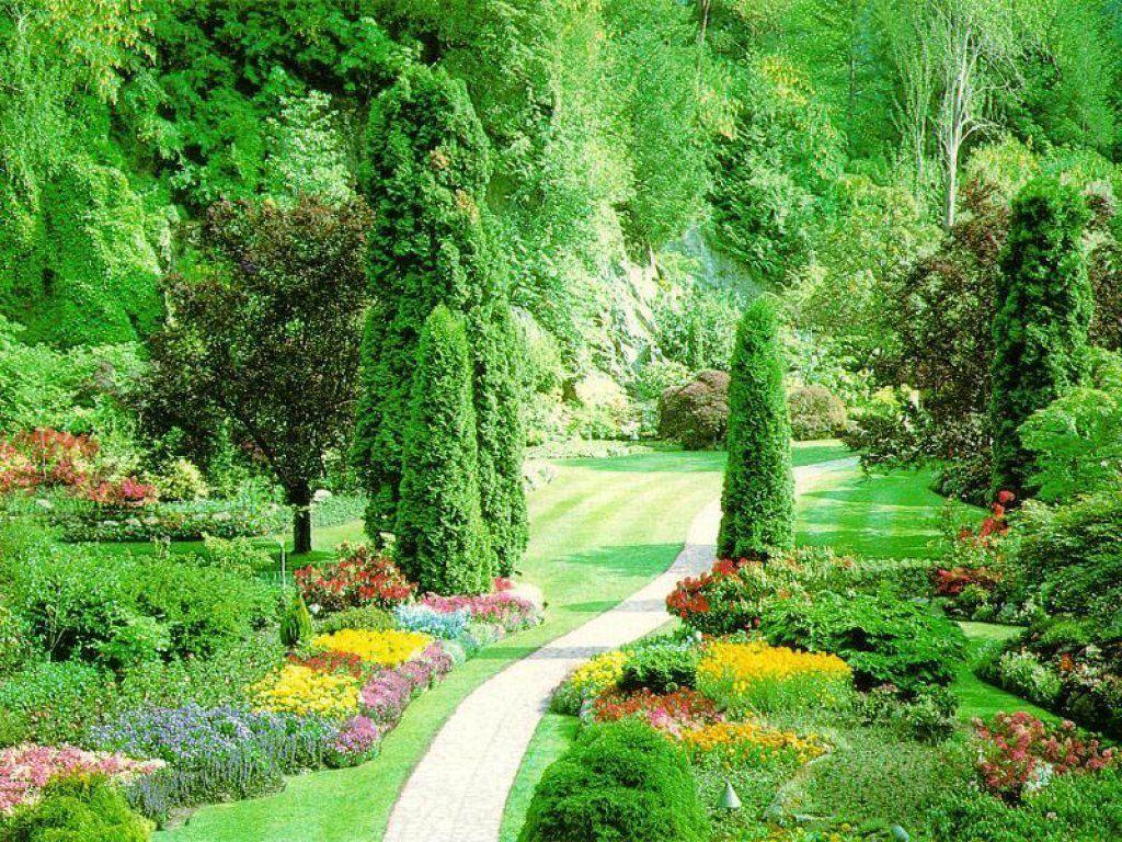 Beautiful garden cartoon - Images For Flower Garden Cartoon Background