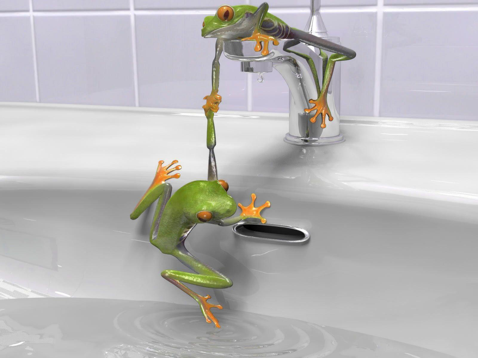 Bathroom Bathtub Cartoon Faucet Frog Frogs Funny Green Water