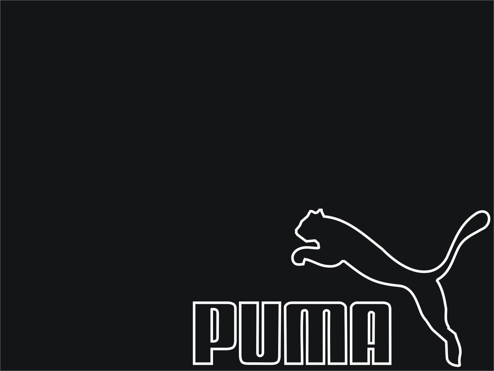 Puma Wallpapers - Wallpaper Cave