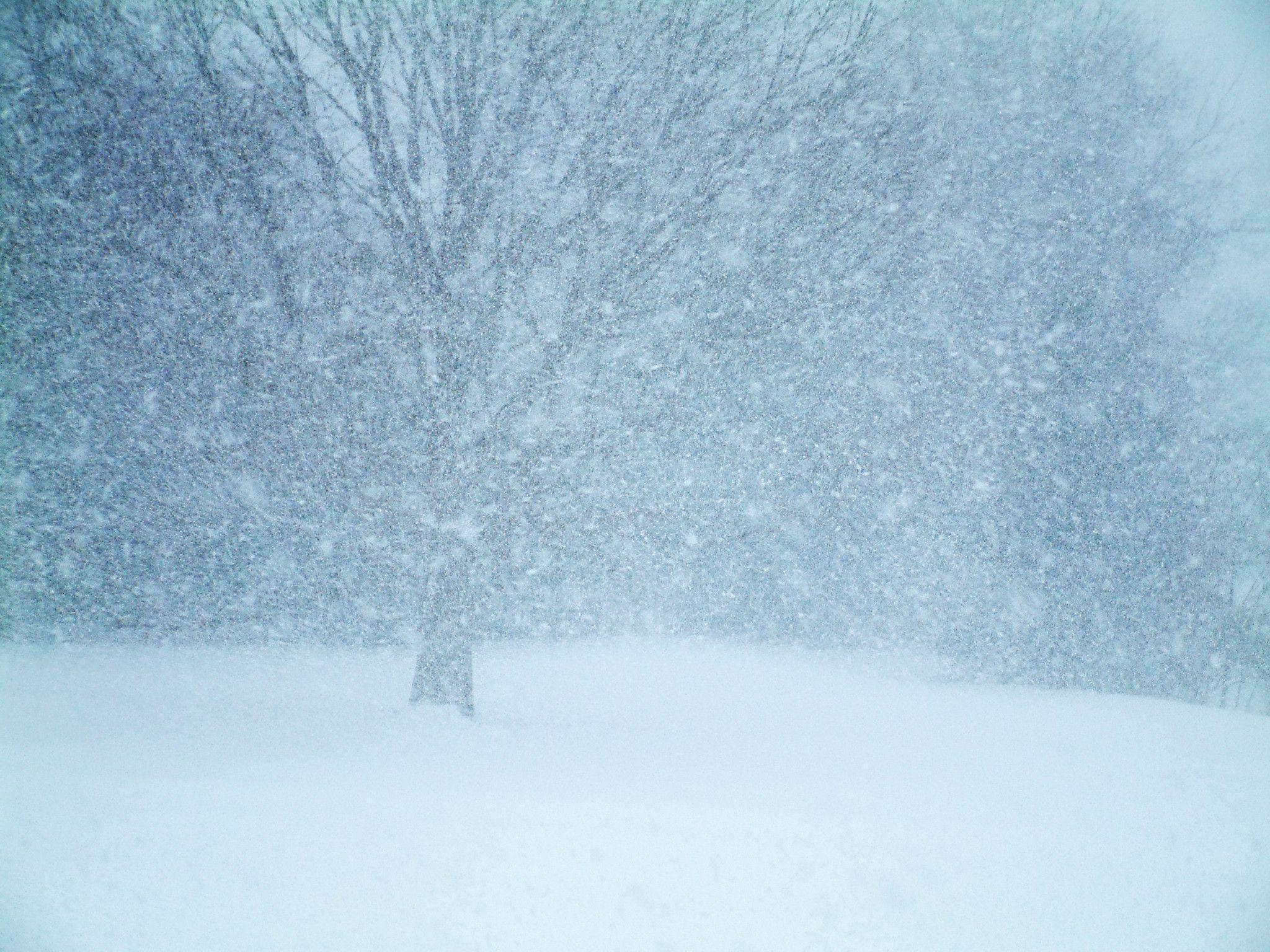 Images For > Winter Blizzard Wallpaper