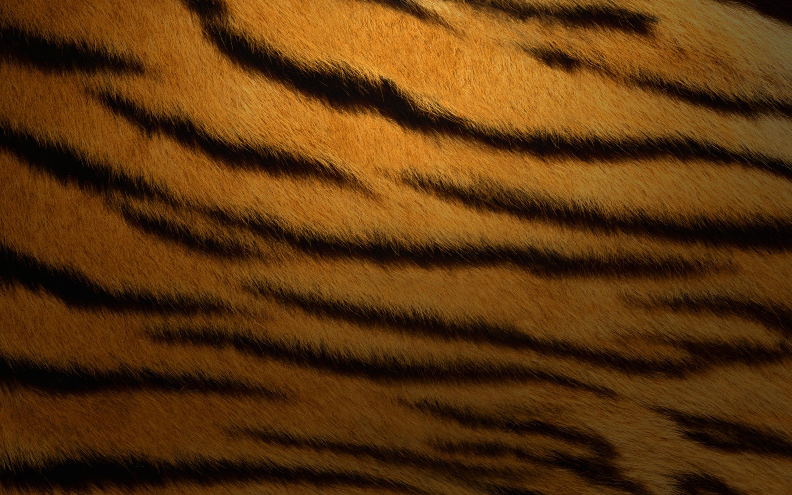 Mac Os X Tiger Wallpapers 21779 Wallpapers