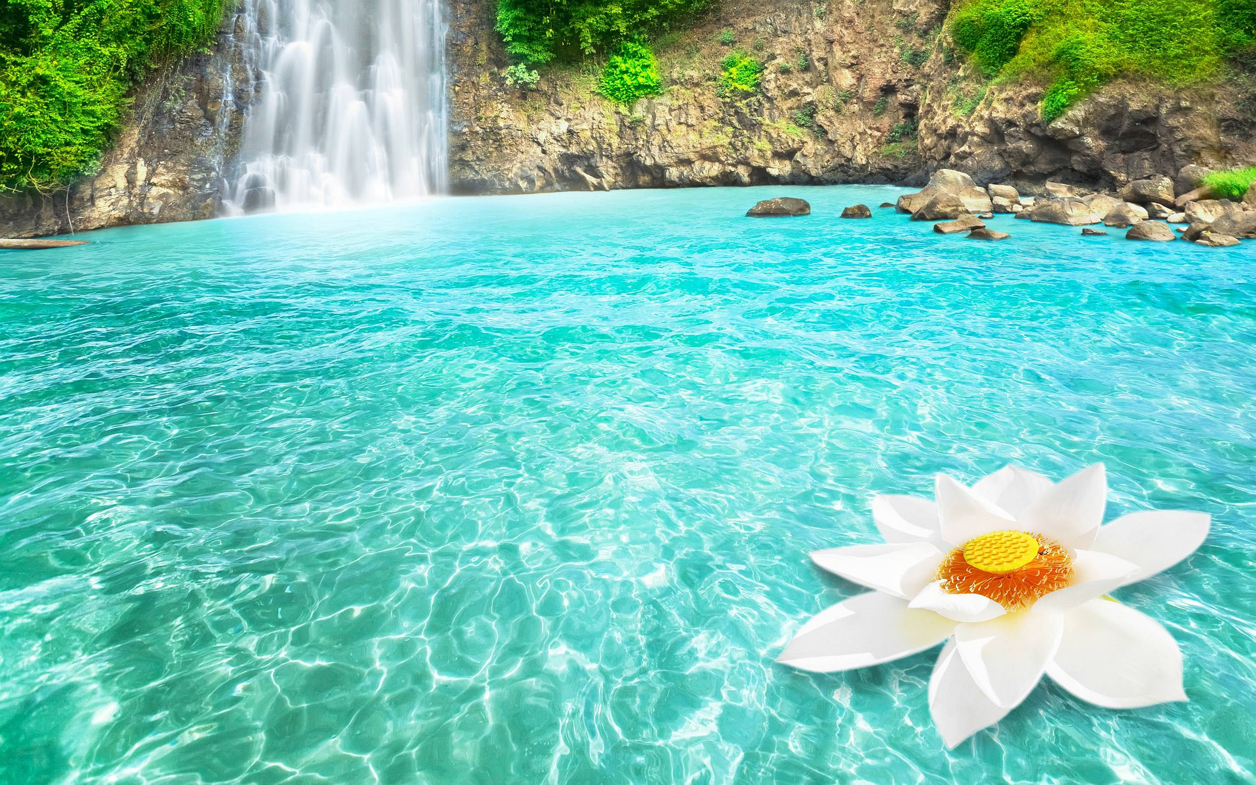 FunMozar – Waterfall And Flowers Wallpapers