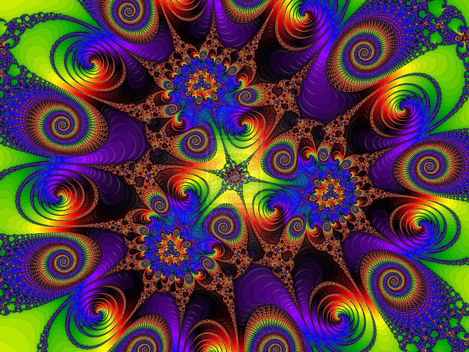 What Are Magic Mushrooms  The Good Drugs Guide