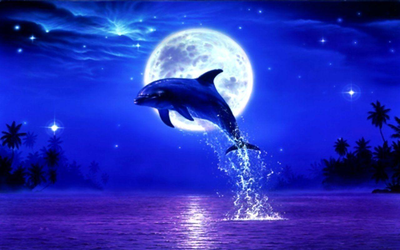 Dolphin On Moonlight Night Wallpaper #11740 Wallpaper | Wallpaper .