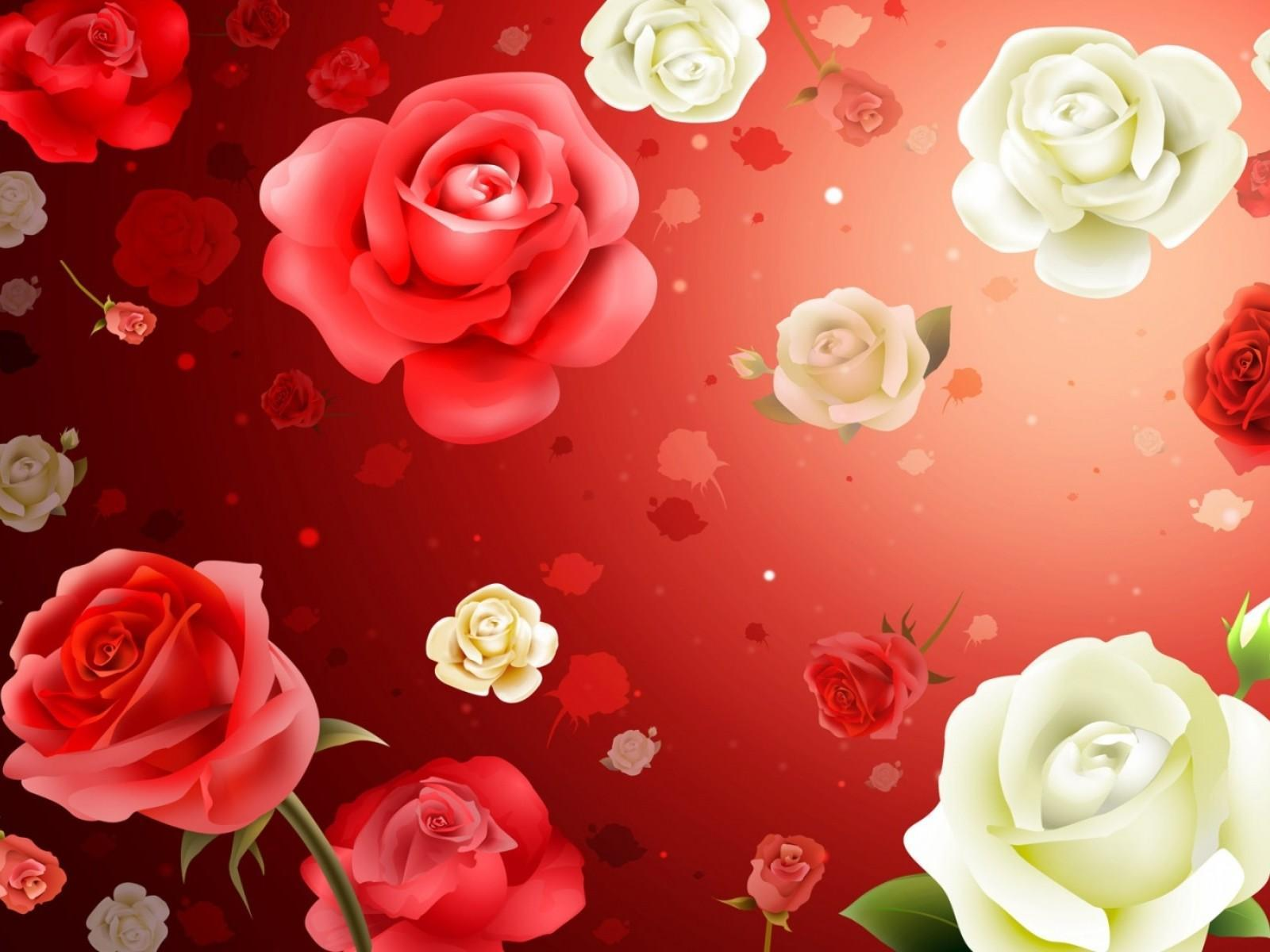 Beautiful Rose Wallpapers Wallpaper Cave