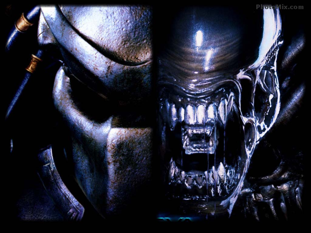 Alien Vs Predator Wallpapers Wallpaper Cave