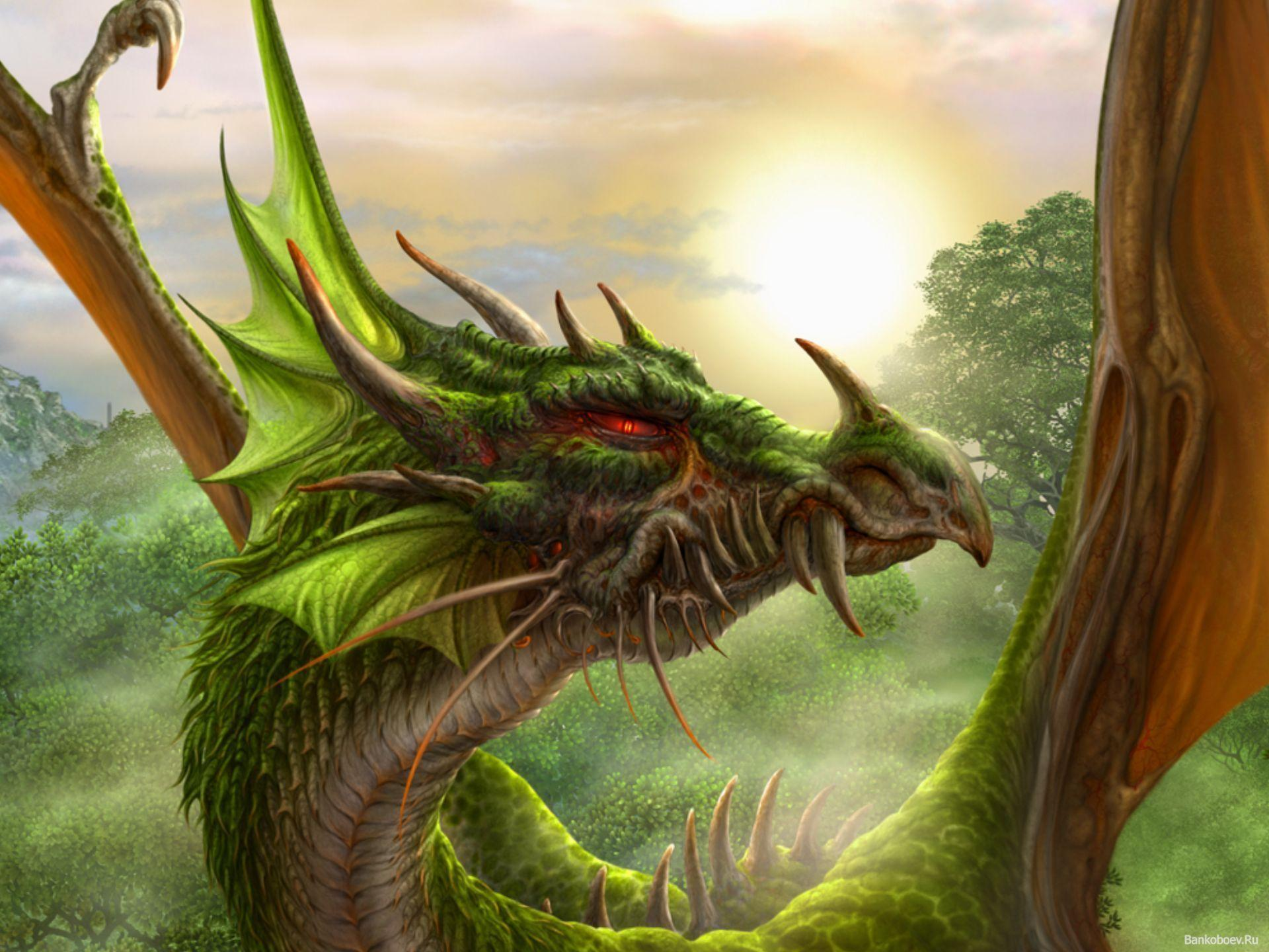 Cool Green Dragon Head Image & Pictures