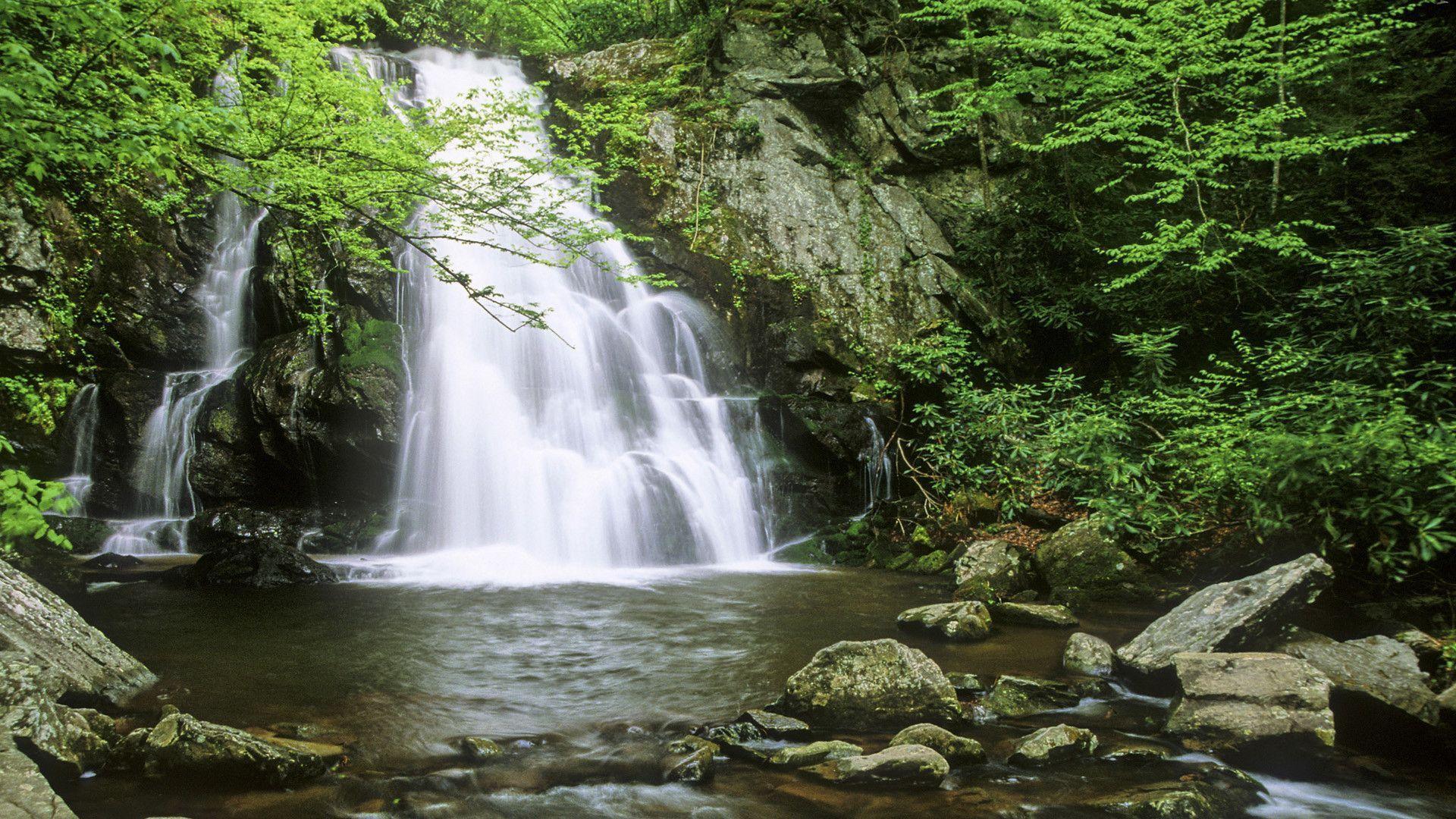 mountains waterfalls forest usa - photo #45